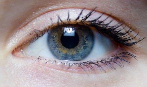 האם הילדים צריכים רופא עיניים